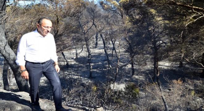 Başkan Oğuz: Yeniden ağaçlandıracağız