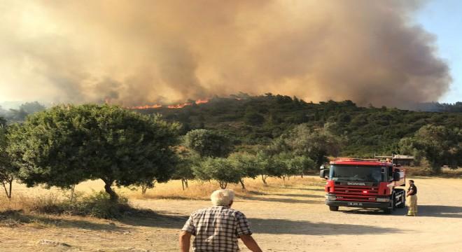 Urla'da  Korkutan yangın!